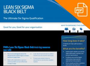 FLYER: Lean Six Sigma Black Belt