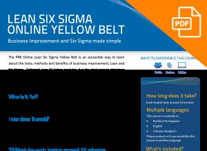 FLYER: Online Lean Six Sigma Yellow Belt