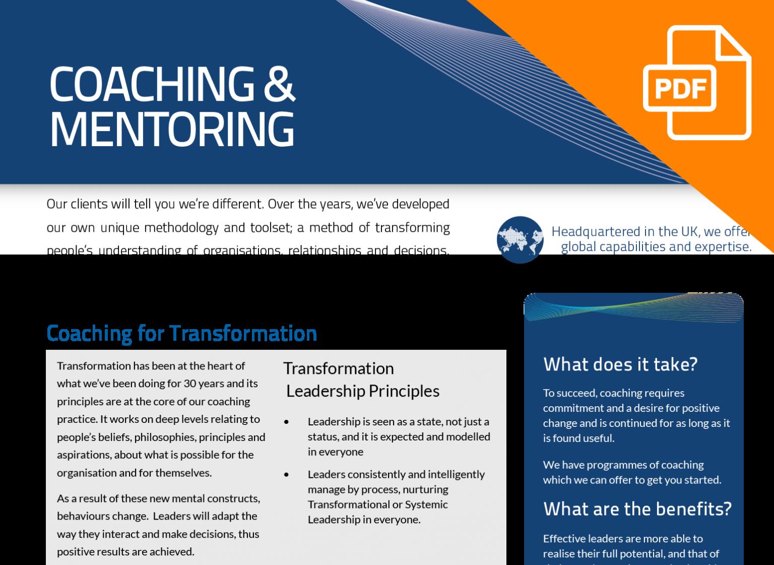 FLYER: Coaching & Mentoring