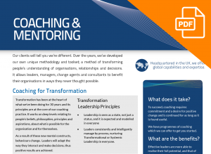 FLYER: Coaching & Mentoring