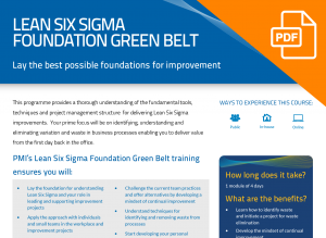 FLYER: Lean Six Sigma Foundation Green Belt