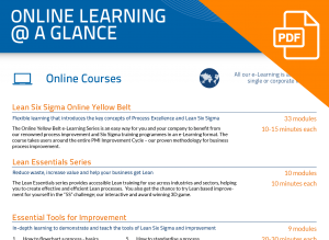 FLYER: Online Learning @ a Glance