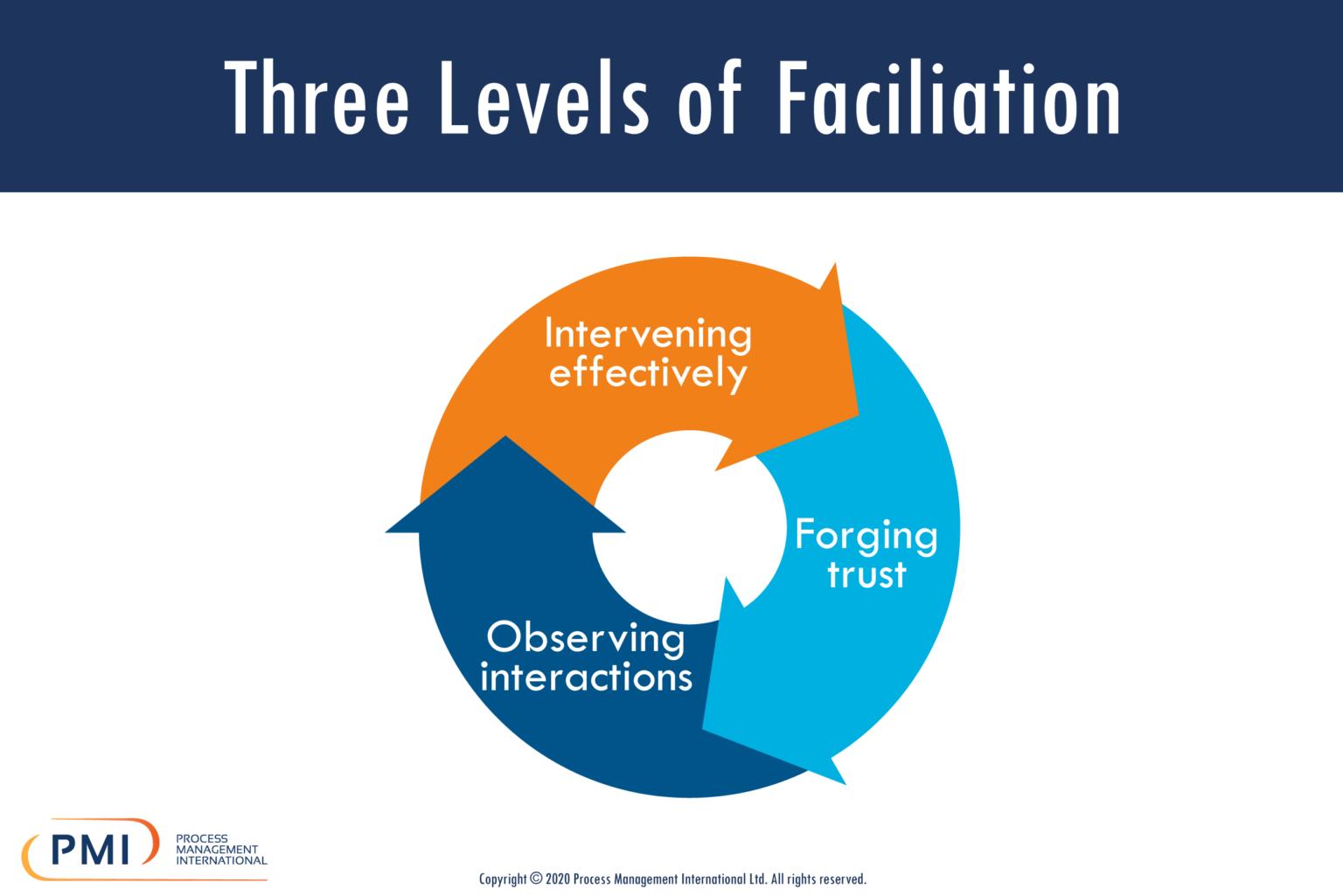 Three Levels of Facilitation Infographic