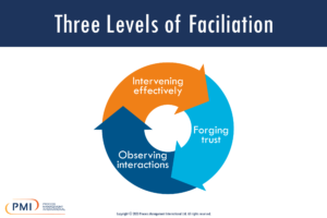 Three Levels of Facilitation Infographic