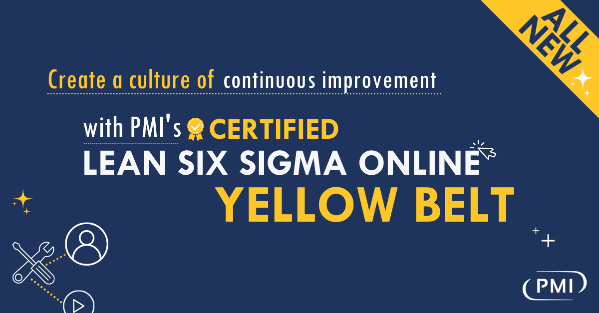 Create a Culture of Continuous Improvement with PMI's Certified Lean Six Sigma Online Yellow Belt